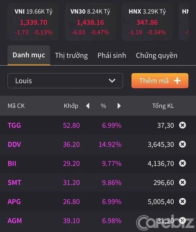 Hiện tượng cổ phiếu họ Louis trên sàn chứng khoán: Tăng phi mã từ mức giá trà đá lên hàng chục nghìn đồng, đỉnh điểm có mã tăng 4.300% - Ảnh 1.