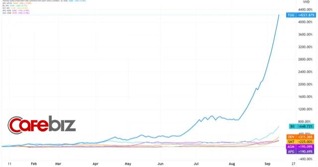Hiện tượng cổ phiếu họ Louis trên sàn chứng khoán: Tăng phi mã từ mức giá trà đá lên hàng chục nghìn đồng, đỉnh điểm có mã tăng 4.300% - Ảnh 2.