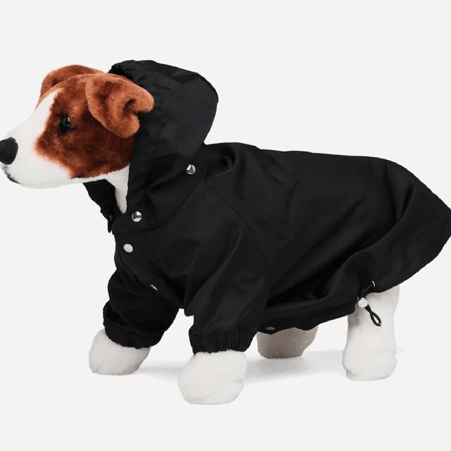 """Không ngờ phụ kiện cho thú cưng cũng có những món đồ hiệu đắt đỏ lên đến cả nghìn đô như này, mua về nâng tầm đẳng cấp thượng lưu cho các """"boss"""" - Ảnh 3."""
