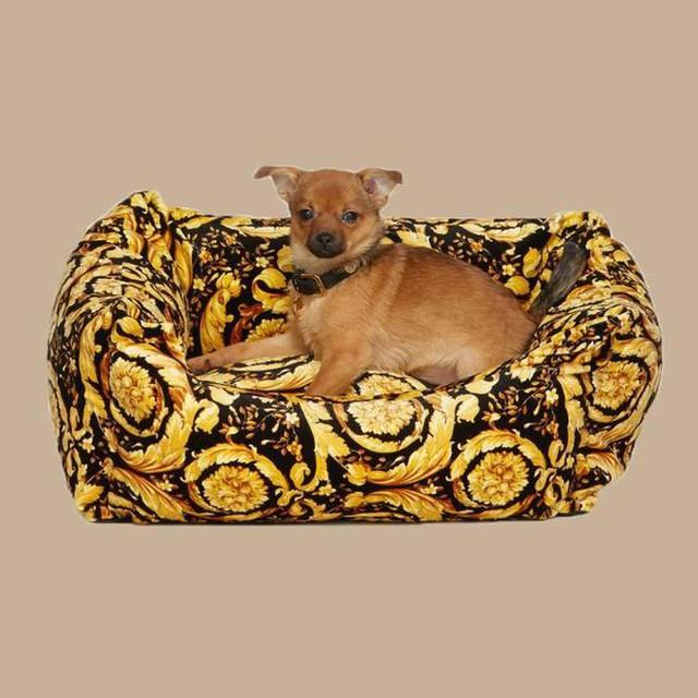 """Không ngờ phụ kiện cho thú cưng cũng có những món đồ hiệu đắt đỏ lên đến cả nghìn đô như này, mua về nâng tầm đẳng cấp thượng lưu cho các """"boss"""" - Ảnh 4."""