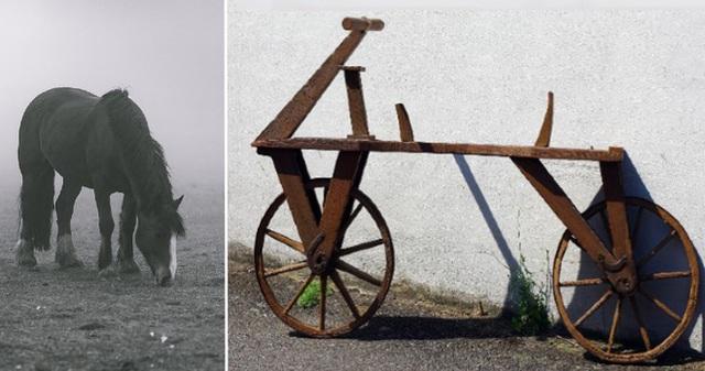 Hóa ra tàu lượn, chữ nổi, xe đạp hay băng vệ sinh đều được phát minh ra nhờ vào những lý do vô cùng đặc biệt - Ảnh 3.