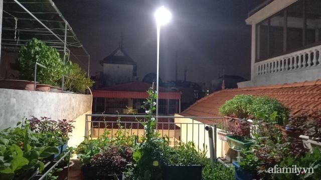 Khoảng sân thượng chỉ 15m² nhưng đủ các loại rau xanh tốt tươi không lo thiếu thực phẩm mùa dịch ở Hà Nội - Ảnh 15.