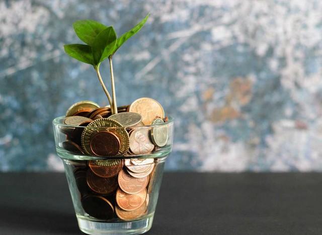 Chuyên gia phân tích: Tiết kiệm và đầu tư giống như lăn trái cầu tuyết - Thời gian đầu tư càng lâu, lợi nhuận đạt được càng lớn - Ảnh 2.