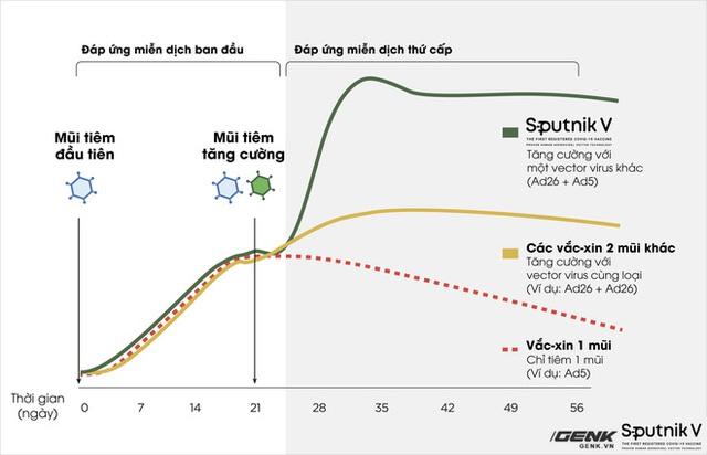 Vắc-xin Sputnik V: Công nghệ, độ an toàn và hiệu quả, khả năng chống biến thể Delta - Ảnh 2.