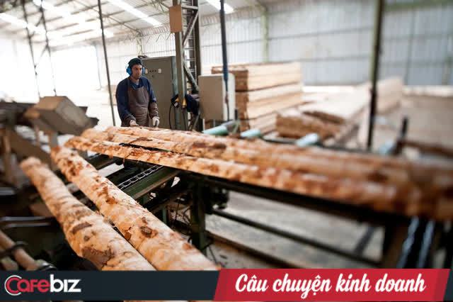 Doanh nghiệp chế biến gỗ vẽ lại chuỗi cung ứng nguyên liệu, tính chiến lược phục hồi hậu Covid-19 - Ảnh 2.