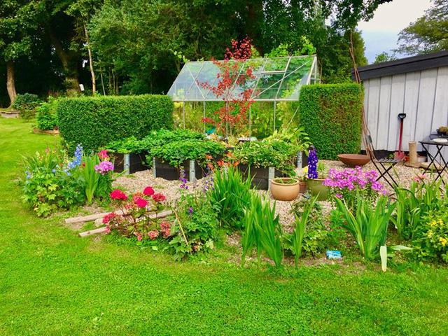 Khu vườn cổ tích của hai chàng trai có cùng sở thích trồng rau, nuôi gà  - Ảnh 5.