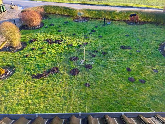 Khu vườn cổ tích của hai chàng trai có cùng sở thích trồng rau, nuôi gà  - Ảnh 6.