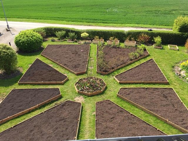 Khu vườn cổ tích của hai chàng trai có cùng sở thích trồng rau, nuôi gà  - Ảnh 8.