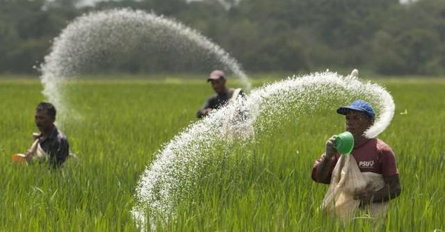Bức tranh nông nghiệp năm 2016 trước cơ hội thay đổi từ gói tín dụng 50 nghìn tỷ - Ảnh 4.