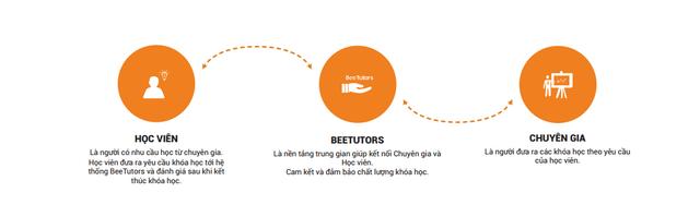 Mô hình BeeTutors