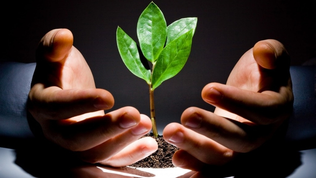 Hãy đầu tư cho hiện tại để hưởng thành quả tương lai