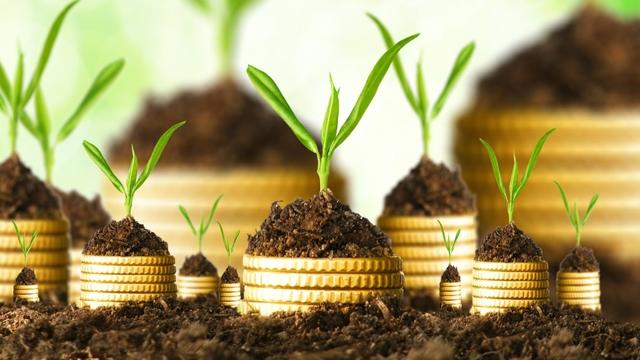 Người giàu rất giỏi đầu tư để sinh thêm lợi