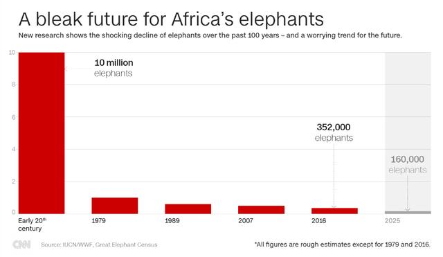 Vì sao tuyên bố xem xét lệnh cấm nhập khẩu ngà voi của Tổng thống Donald Trump lại gây tranh cãi? - Ảnh 3.