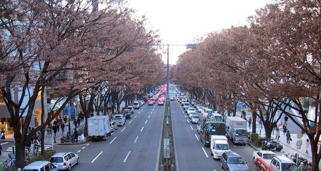 Tại sao không có thùng rác, đường phố ở Nhật Bản vẫn rất sạch sẽ?