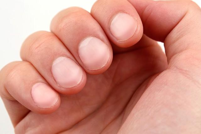 Nhìn tay đoán bệnh bằng 6 dấu hiệu khoa học: Sức nắm tay báo hiệu bệnh tim, vân tay tiết lộ bệnh huyết áp...  - Ảnh 1.