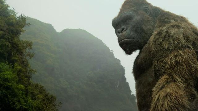 Đừng đẩy gánh nặng du lịch Việt Nam lên vai King Kong nữa!