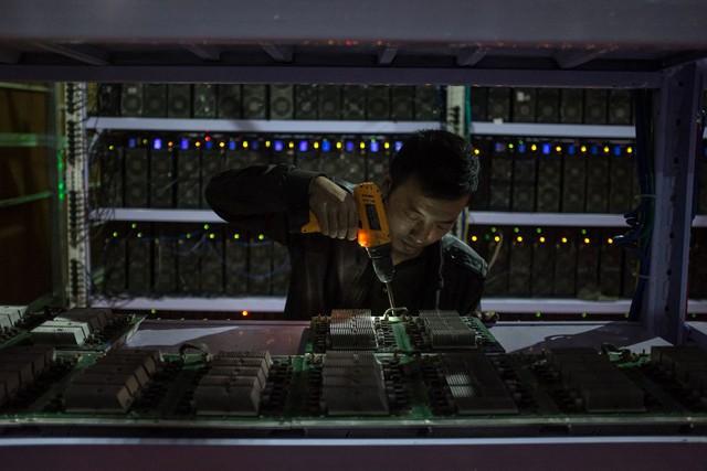 Một nhân viên đang lắp ráp bảng mạch máy tính.