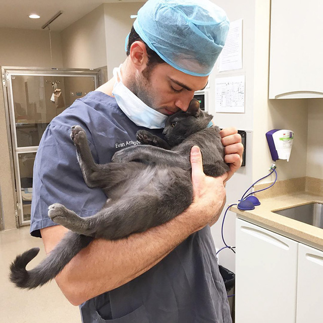 Mèo ở đây đều là bệnh nhân nên cần được chăm sóc đúng mức, người làm việc sẽ chăm sóc sức khoẻ tinh thần cho mèo.