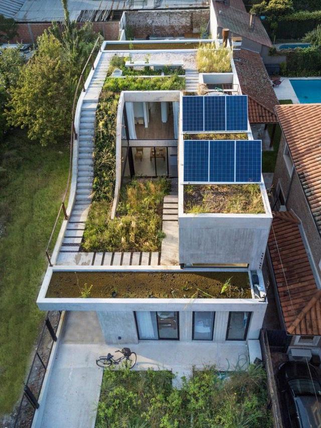 Thiết kế ấn tượng các khu vườn trên mái tạo nên kiến trúc của ngôi nhà rất độc đáo - Ảnh 1.