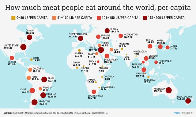 Thịt công nghệ được đầu tư bởi Bill Gates đang khiến ngành chăn nuôi lo sợ: Chỉ cần 1/10 lượng nước, 1/100 diện tích đất thông thường, chất lượng 100% giống thịt thật - Ảnh 1.