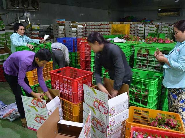 Thị trường Trung Quốc thay đổi, nhiều DN Việt lao đao - Ảnh 1.