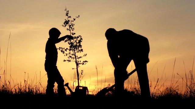 Bài học cho những ai chưa thành công - Bạn có đủ can đảm sống như cây mao trúc? - Ảnh 1.