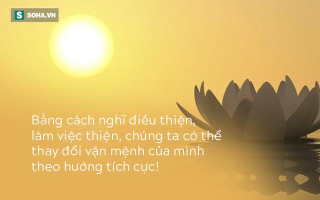 Dù là ai, chúng ta cũng sẽ bị hai sức mạnh này chi phối cả đời: Đọc và ngẫm cho chính mình - Ảnh 2.