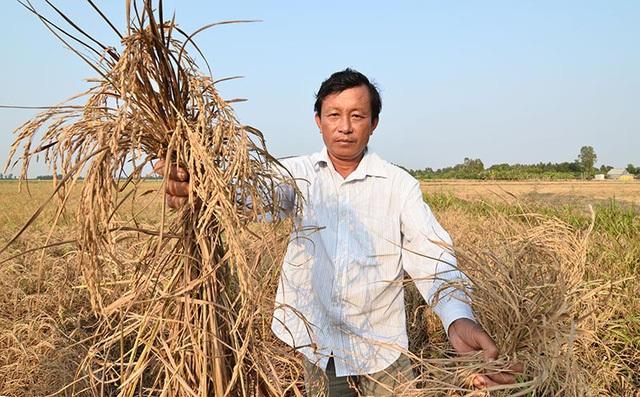 Doanh nhân hóa nông dân đồng bằng sông Cửu Long - Ảnh 2.