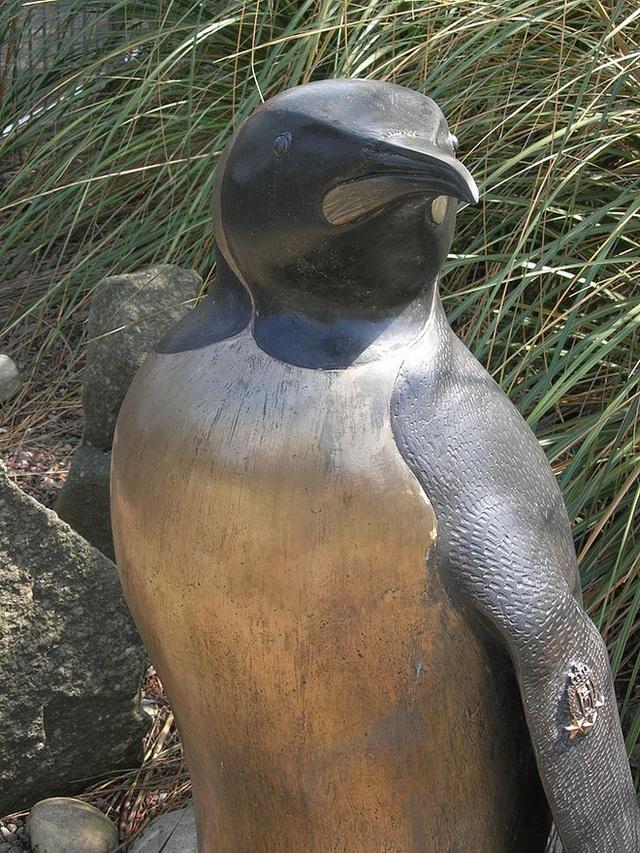 Có thể bạn chưa biết: Đây là chú chim cánh cụt đã được phong tước Hiệp sĩ - Ảnh 2.