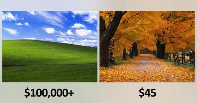 Bạn có biết bức ảnh nền huyền thoại của Windows XP giá bao nhiêu không? - Ảnh 1.
