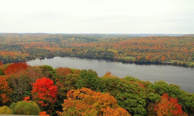 11. Tháp Dorset Lookout, gần Toronto: Khu Muskoka của Ontario là khu vực ngoài trời của Toronto, với những tảng đá grannit màu đỏ, rải rác những con sông và thác nước. Phía Đông Bracebridge, đi qua quốc lộ 117, du khách có thể nhìn ngắm những rừng gỗ sồi, bạch dương và phong rực rỡ sắc vàng.