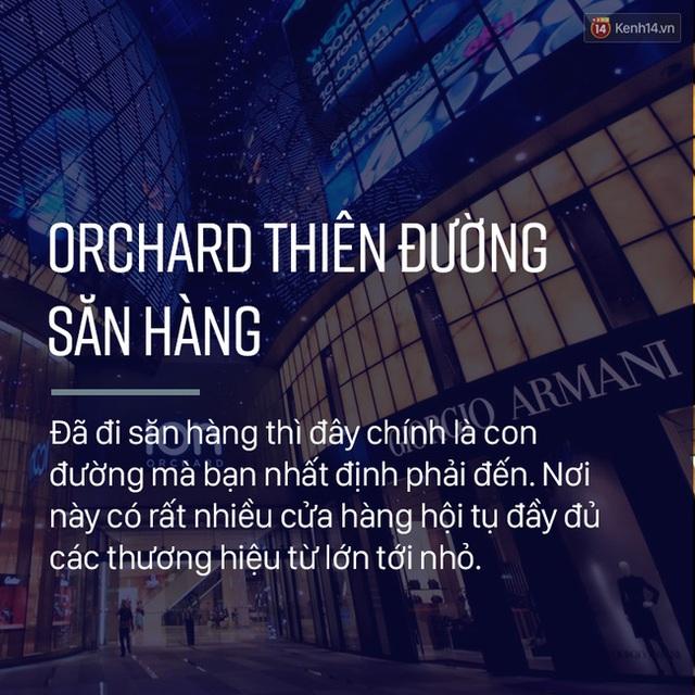 Một trong những nơi đầu tiên bạn phải đến tại Singapore đó chính là con đường Orchard, nơi tập trung hầu hết các thương hiệu nổi tiếng trên toàn thế giới!