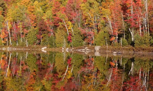 12. Dãy Adirondack, tiểu bang New York: Cả vùng Adirondack vào thu như một bức tranh với những gam màu ấm nóng tuyệt đẹp, sắc vàng đỏ của cây lá, xanh của trời. Đây là cũng là địa điểm tuyệt đẹp để ngắm nhìn sắc thu rực rỡ và đa dạng của vùng Đông Bắc Mỹ.