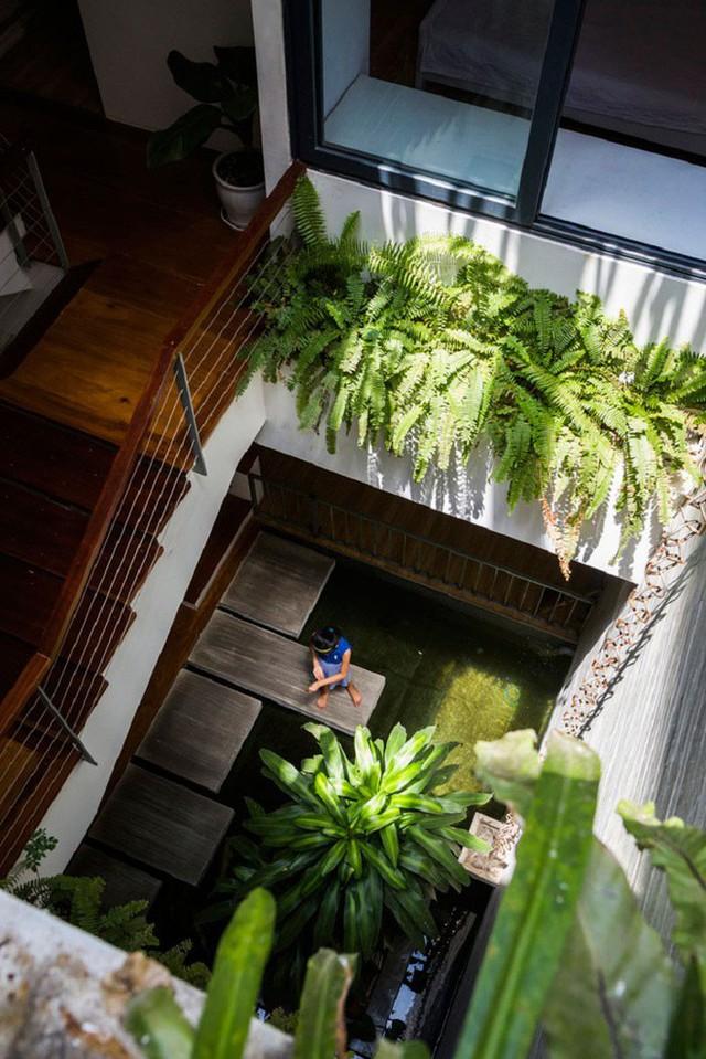 Các không gian chức năng đều được thiết kế xoay quanh khu vườn thẳng đứng đầy nắng và cây xanh này !