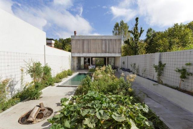 Thiết kế ấn tượng các khu vườn trên mái tạo nên kiến trúc của ngôi nhà rất độc đáo - Ảnh 14.
