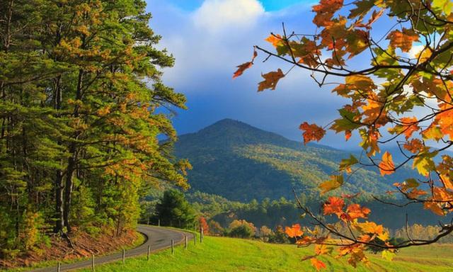 14. Dãy núi Great Smoky, Tennessee/ Bắc Carolina: Đến du ngoạn vào mùa thu tại công viên quốc gia này, du khách có thể phóng tầm mắt xa tít tắp. Những cung đường có thể lái xe hay đi bộ để ngắm nhìn lá màu thu tại nơi đây.