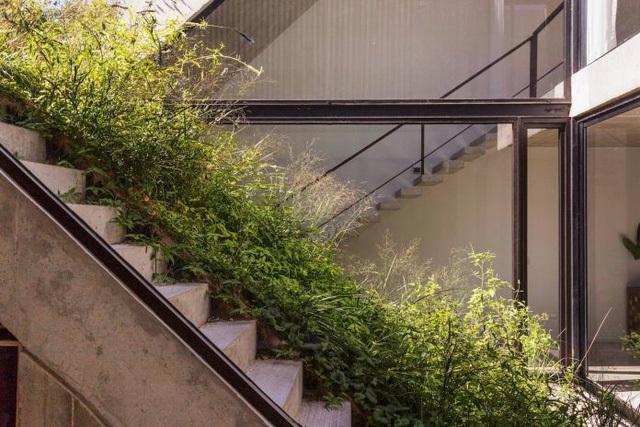 Thiết kế ấn tượng các khu vườn trên mái tạo nên kiến trúc của ngôi nhà rất độc đáo - Ảnh 15.