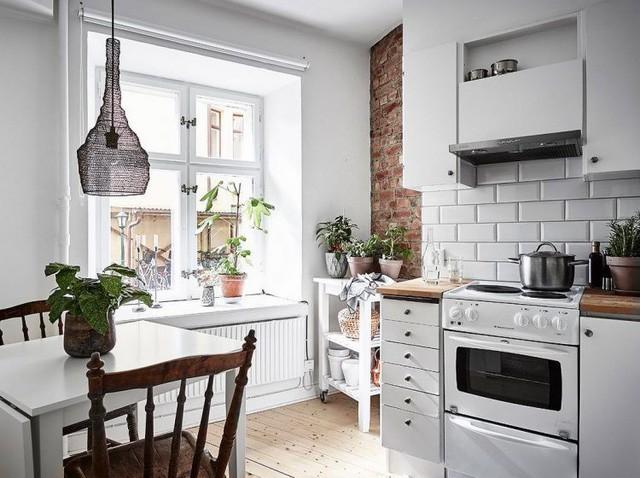 Không gian bếp cũng tràn ngập cây xanh mang sức sống và tươi mới cho căn hộ.