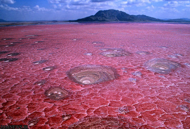 Hồ Natron, Tanzania.