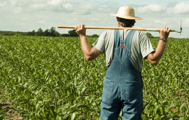 """Chuyện bác nông dân và cái giếng: Thông minh mà sử dụng sai chỗ thì cũng thành """"tai hoạ"""" mà thôi - Ảnh 2."""