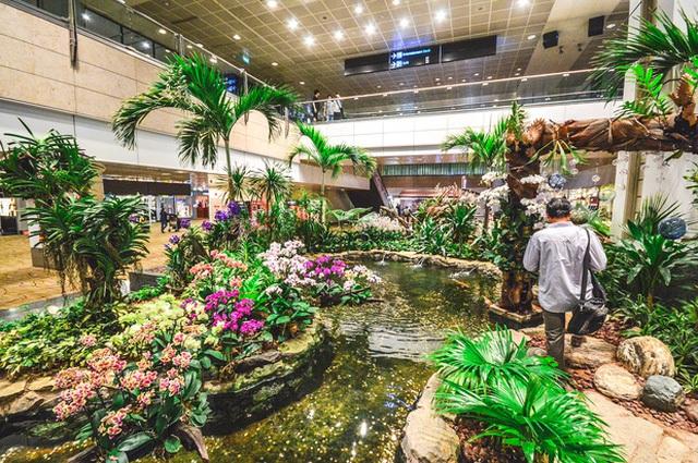 9 sân bay quốc tế với các hoạt động giải trí thú vị mà bạn không nên bỏ qua - Ảnh 3.