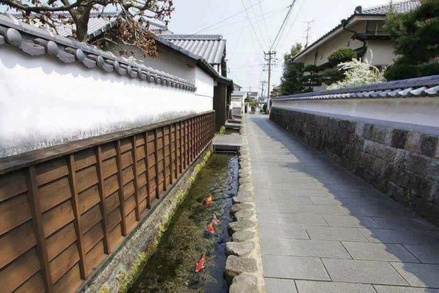 Nằm cách không xa thủ đô Tokyo - Shizuoka không chỉ nổi tiếng với địa danh núi Phú Sĩ mà còn được biết đến với khung cảnh thiên nhiên xinh đẹp.