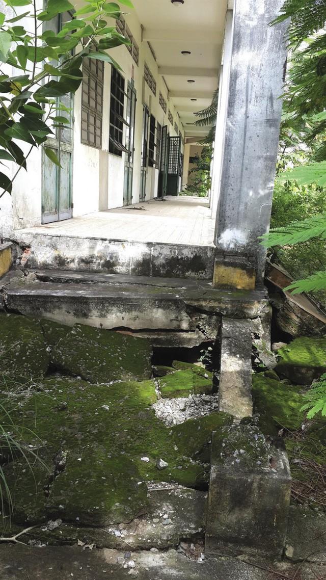 Ngôi trường hàng chục tỷ đồng bỏ hoang giữa Sài Gòn - Ảnh 3.
