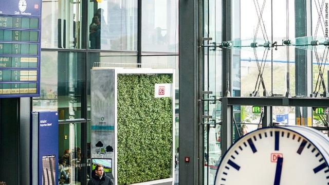 Bức tường rêu nhỏ tí này chính là giải pháp lọc khí mới, hiệu quả bằng gần 300 cây xanh lại di chuyển thoải mái không cần chặt hạ - Ảnh 4.