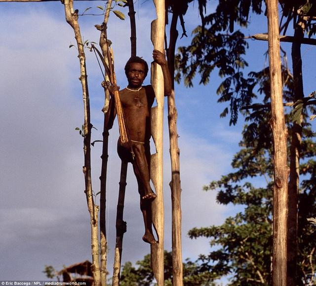 Trong khi một số thổ dân dọn đến sống trong những ngôi làng thì vẫn còn rất nhiều người tiếp tục duy trì lối sống ở trên cây.