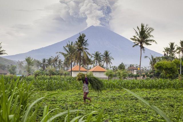 13 bức ảnh lột tả những thảm họa mà nhân loại phải gánh chịu trong năm 2017 - Ảnh 4.