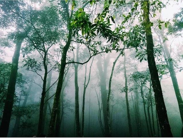 5 công trình bị bỏ hoang tại Việt Nam, muốn có những bức ảnh kì bí hết cả hồn thì nhất định phải đến! - Ảnh 45.