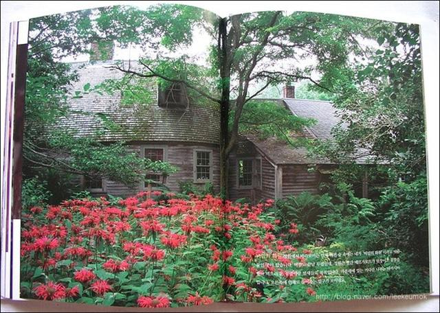 Ngôi nhà của bà Tasha đã được nhiều tờ báo đăng tải.