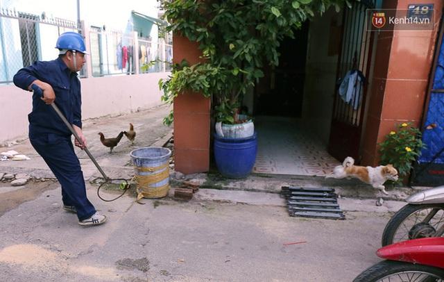 Chó cưng bị Đội săn bắt tóm, cụ bà hớt hải: Nó đi chợ với tôi, đang nằm trên vỉa hè chờ tôi về cùng thì bị bắt - Ảnh 6.