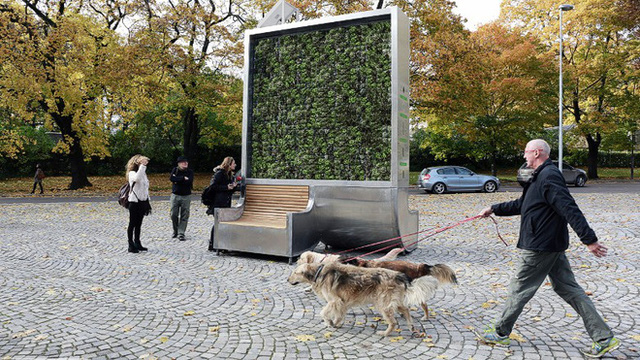 Bức tường rêu nhỏ tí này chính là giải pháp lọc khí mới, hiệu quả bằng gần 300 cây xanh lại di chuyển thoải mái không cần chặt hạ - Ảnh 7.